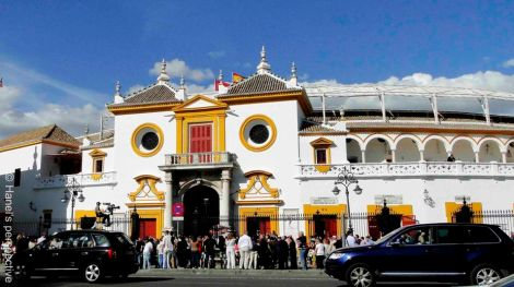 Plaza de Toros, Bullfighting ring