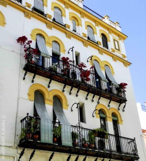 A house in a parallel lane to the Plaza de Toros